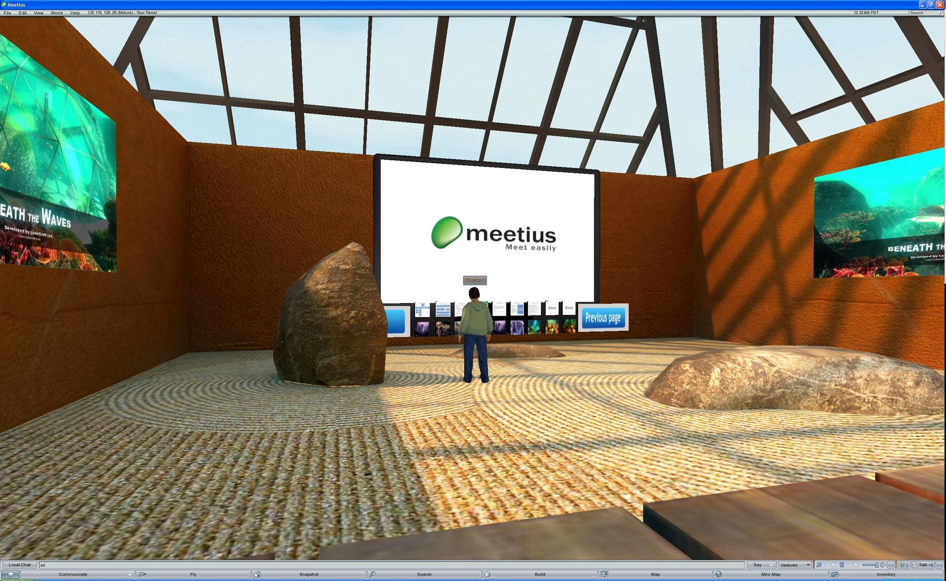 cie_virtual_meeting_room_screenshots_04