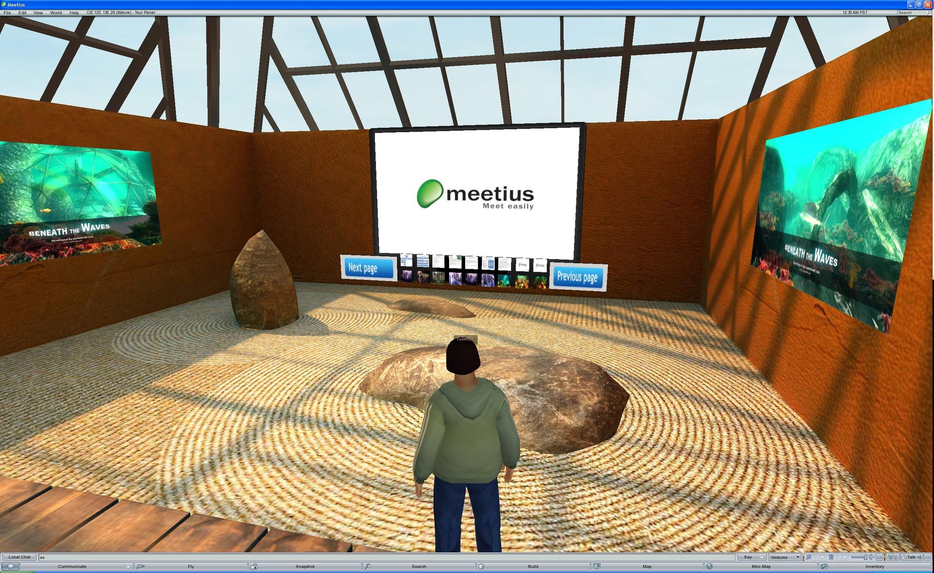cie_virtual_meeting_room_screenshots_01