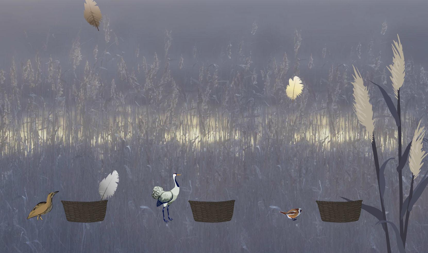 Birds_Linnut2_lq